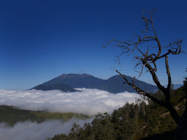 View of Mount Raung, from Ijen trek path...