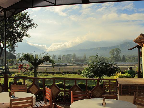 Stunning view of mount Ijen from Arabica Homestay...
