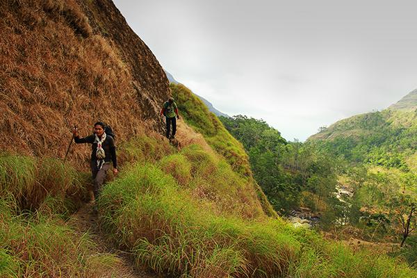 Torean trail...